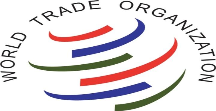 Το Ρωσικό κοινοβούλιο επικύρωσε την ένταξη στον ΠΟΕ