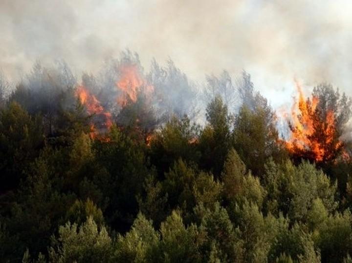 Πολύ υψηλός ο κίνδυνος πυρκαγιάς την Πέμπτη