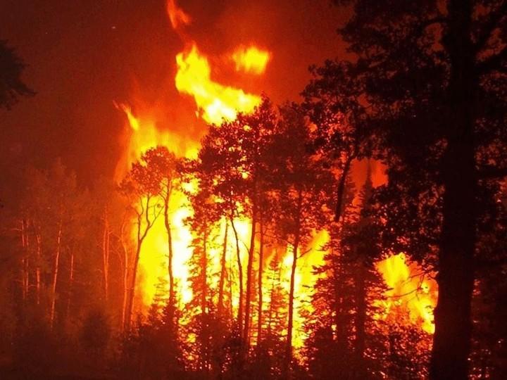 Aνεξέλεγκτη φωτιά στο Άγιο Όρος