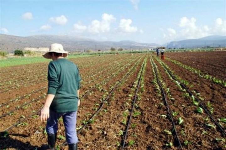 Φόρος στους αγρότες για τις καλλιεργούμενες εκτάσεις