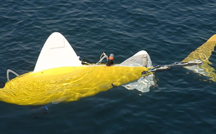 Ρομποτικό ψάρι ελέγχει την ποιότητα του νερού στον Πειραιά