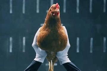 """Πρόστιμα μαμούθ στο """"καρτέλ της κότας"""" - Οι 13 πτηνοτροφικές που τιμωρούνται"""