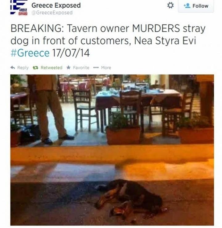 Ιδιοκτήτης ταβέρνας σκότωσε κουτάβι μπροστά στους πελάτες...