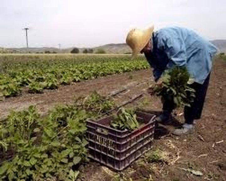 Αγρότες θα αποκλείσουν το υπουργείο Αγροτικής Ανάπτυξης για τις επιδοτήσεις
