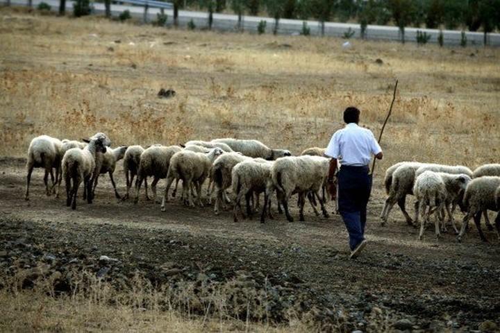 Οι κτηνοτρόφοι απειλούν ότι θα συνεχίσουν τις κινητοποιήσεις τους
