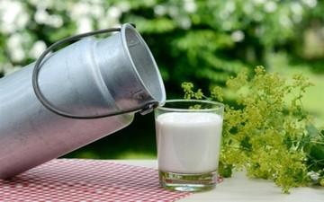 Ξεκινάει σήμερα η διάθεση του «γάλακτος ημέρας» - Πόσο θα πωλείται