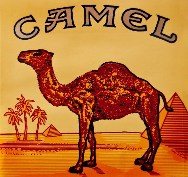 Η Camel απαγόρευσε το κάπνισμα στους χώρους εργασίας