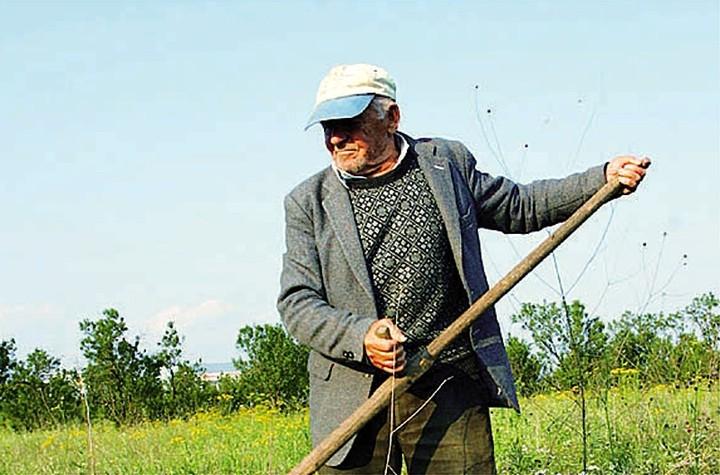 Σήμερα η προκαταβολή της ενιαίας ενίσχυσης ύψους 900 εκατ. ευρώ σε 660.000 αγρότες