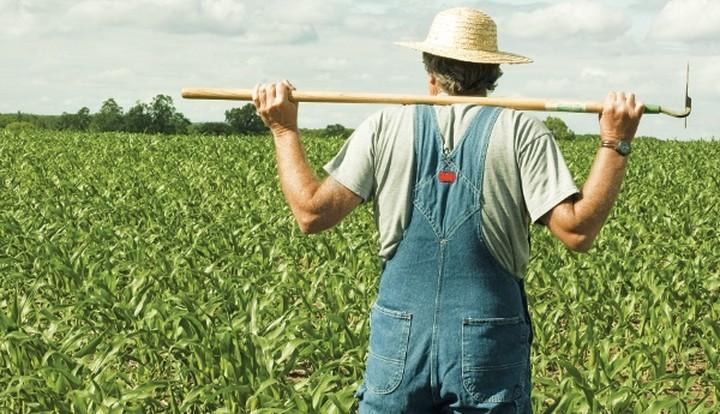 Μέχρι το τέλος του έτους η προκαταβολή 136 εκατ. ευρώ στους 11.116 νέους αγρότες