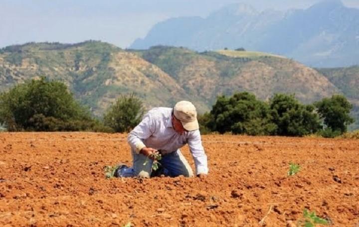 ΥπΑΑΤ: Στα €126 εκατ. η εξισωτική για τους γεωργούς για το 2014