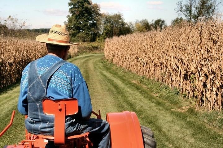 Αγρότες: Απαλλαγή με προϋποθέσεις από την υποχρέωση τήρησης βιβλίων