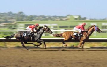 ΤΑΙΠΕΔ προς ΟΠΑΠ: Ελάτε να υπογράψουμε τη σύμβαση για το ιπποδρομιακό στοίχημα