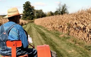 Ερχεται κούρεμα έως 50% στα κόκκινα αγροτικά δάνεια