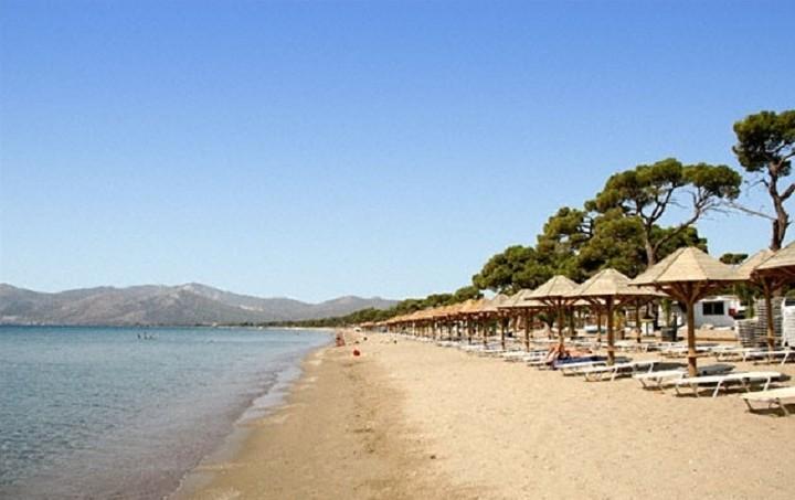Οι 17 ωραιότερες παραλίες της Αττικής που δεν χρειάζεται να πληρώσεις είσοδο (ΦΩΤΟ)