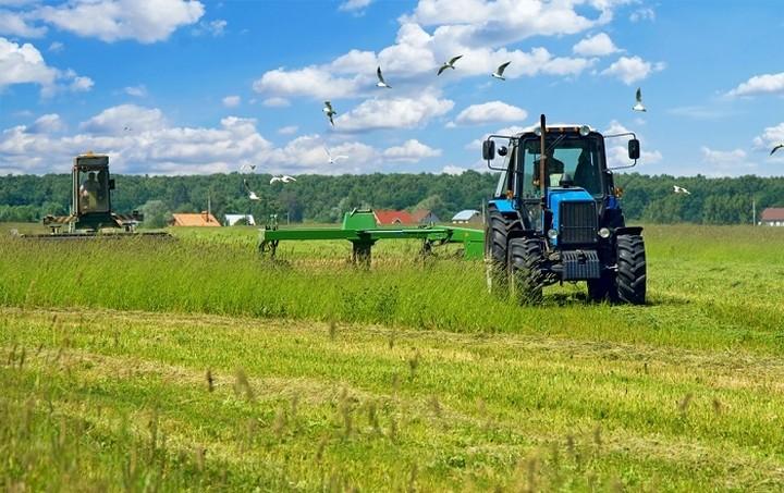 Αυξήθηκαν οι τιμές των γεωργικών - κτηνοτροφικών προϊόντων το Μάρτιο