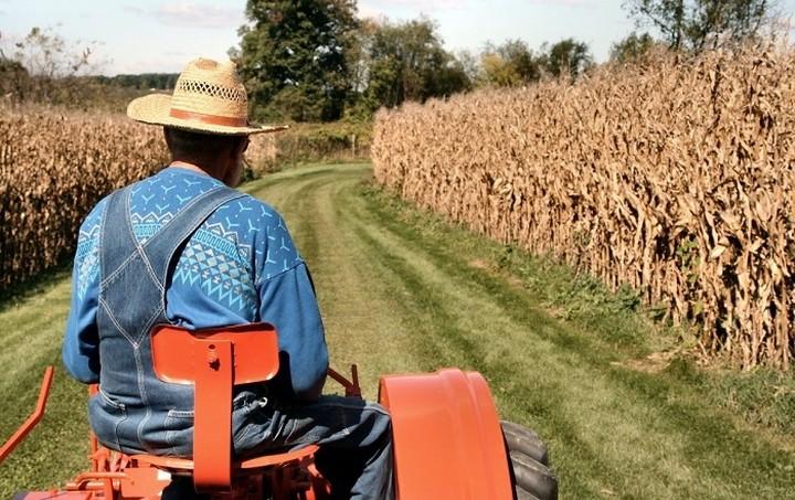 Πώς θα φορολογηθούν φέτος οι αγρότες - Δείτε ολόκληρη την εγκύκλιο