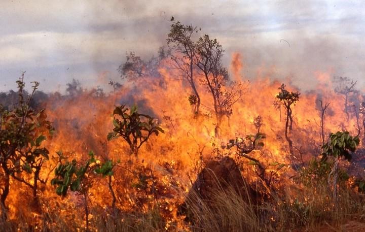 Ξέσπασαν 34 πυρκαγιές σε όλη την επικράτεια από το πρωί