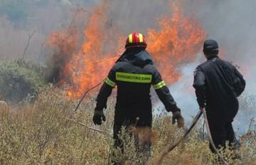 Νέα πυρκαγιά ξέσπασε στη Σταμάτα
