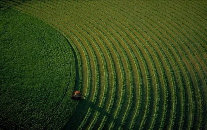 Προώθηση αγροτικών προϊόντων σε αγορές της ΕΕ και Τρίτων Χωρών