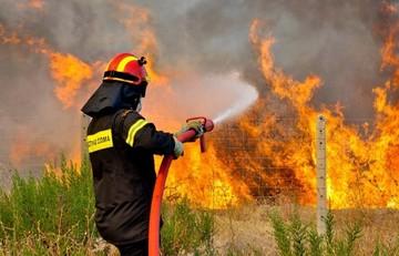 Υπό έλεγχο η πυρκαγιά στα Οινόφυτα