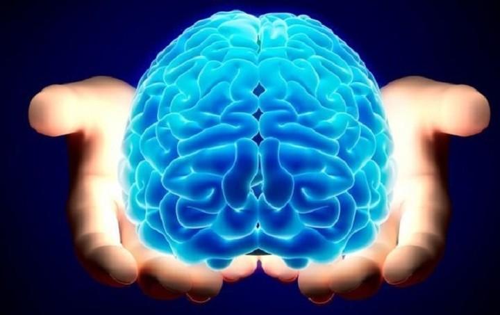 Δημιουργήθηκε σε εργαστήριο ο ... πρώτος ανθρώπινος εγκέφαλος!