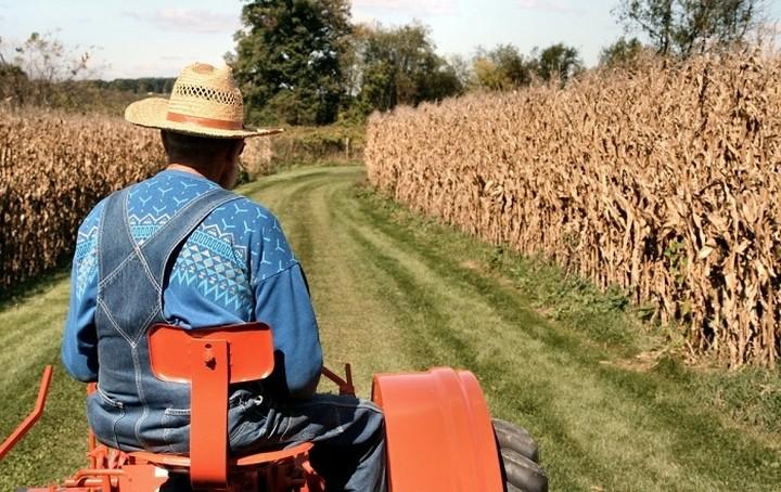 """Η πρώτη """"λυπητερή"""" για τους αγρότες - Πότε θα την πληρώσουν"""