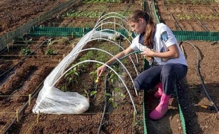 Διατίθονται ακίνητα του υπουργείου σε νέους γεωργούς