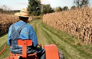 Ποια γεωργικά προϊόντα επιδοτούνται με έως και 500.000€