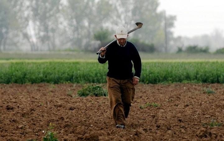 «Βόμβα» για τους αγρότες: Ζητούν πίσω 320 εκατ. ευρώ από τις επιδοτήσεις Χατζηγάκη
