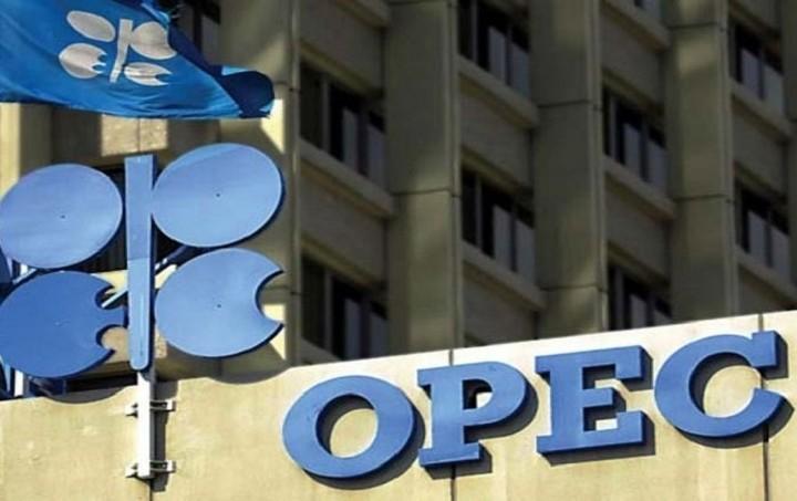 ΟΠΕΚ: Η κατάρρευση των τιμών του πετρελαίου θα πλήξει την παραγωγή