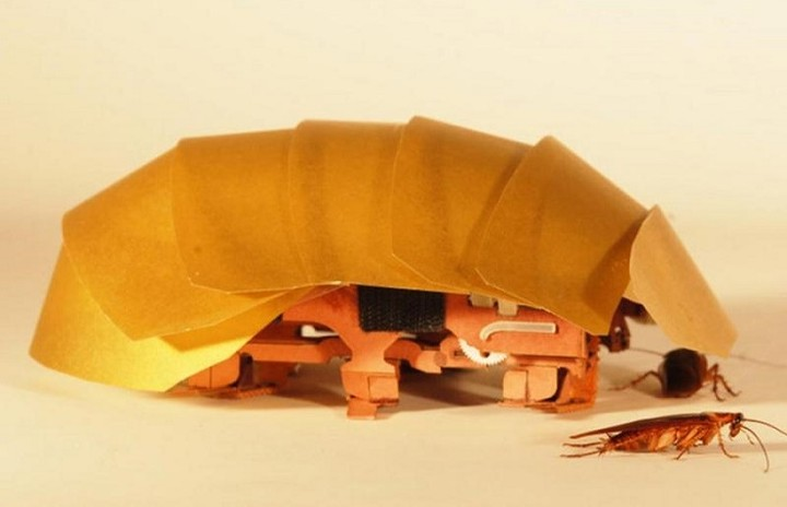 Ρομπότ-κατσαρίδα που τρυπώνει παντού