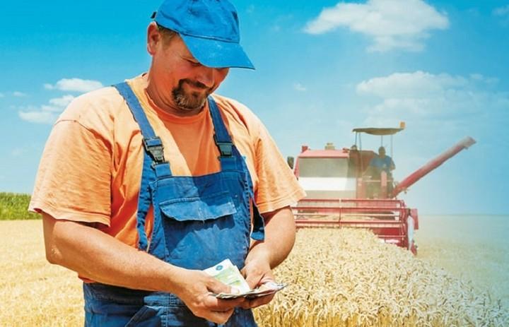 Γιατί οι αγρότες θα χάνουν το μισό τους εισόδημα