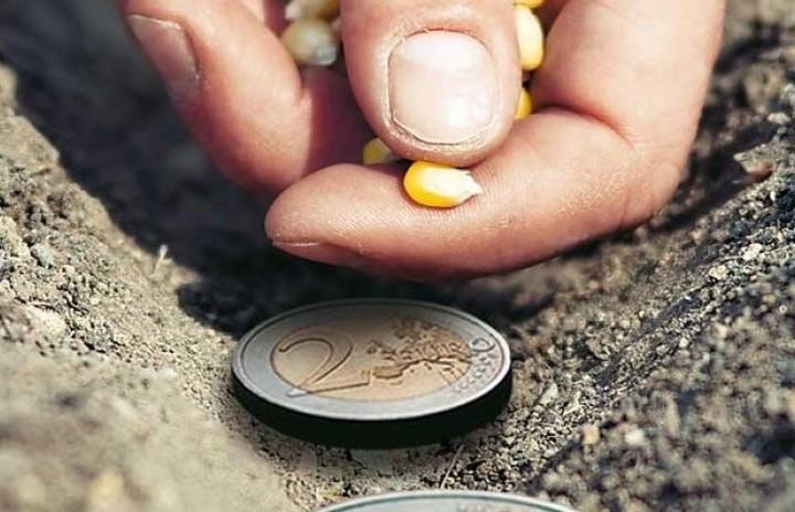 Τι ισχύει με τις αγροτικές επιδοτήσεις