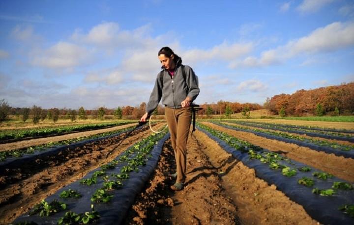 Επιχορηγήσεις ύψους 300 εκατ. ευρώ σε 24.000 νέους αγρότες