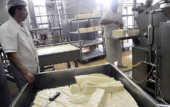 Νέο πρόγραμμα από την ΕΕ για τη στήριξη της γαλακτοκομίας- Οι λεπτομέρειες