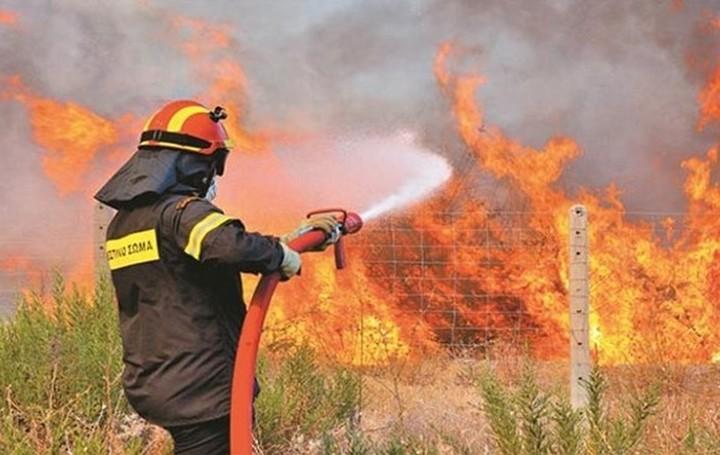 Φωτιά ξέσπασε στη Ραφήνα