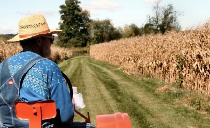 Ποιοι αγρότες δικαιούνται επιδοτήση