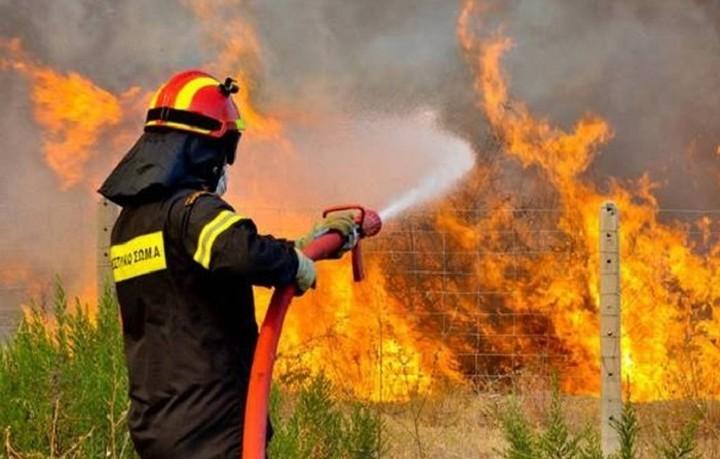 Το Π.Σ. αντιμετώπησε 74 πυρκαγιές το τελευταίο 24ωρο