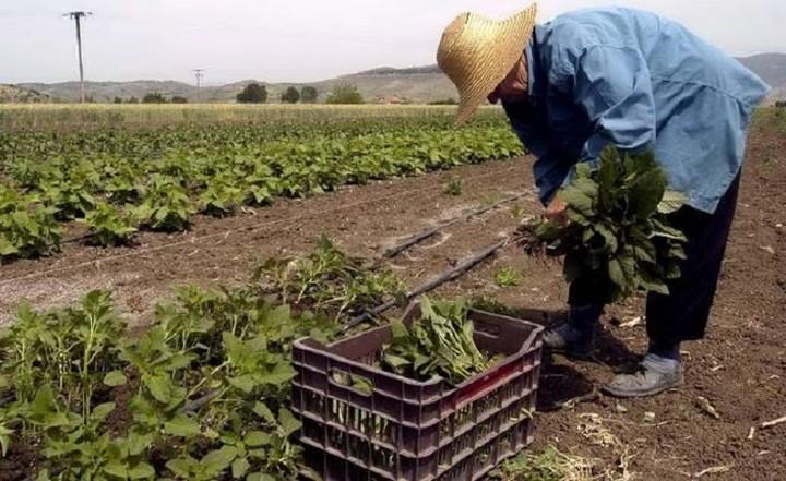 Τα προγράμματα για αγρότες που θα προκηρυχθούν έως το τέλος του χρόνου