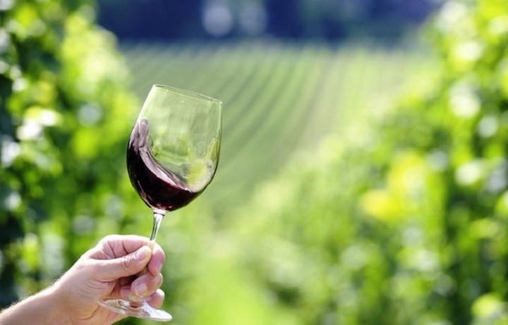 Το ελληνικό κρασί πάει ...Τόκυο!