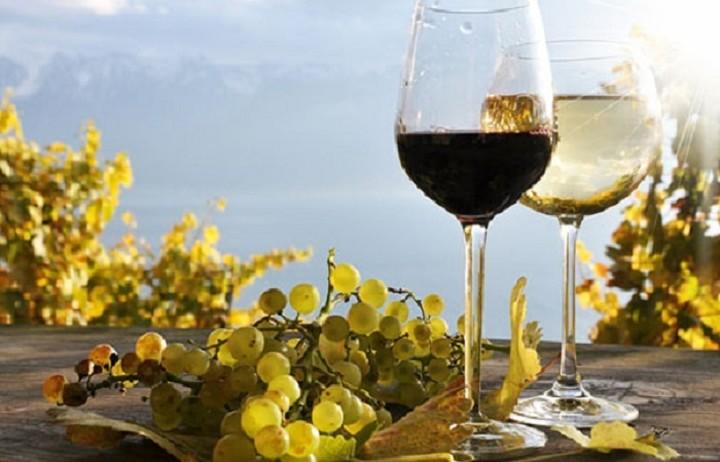 Ένα ελληνικό στη λίστα των New York Times με τα 10 πιο αξέχαστα κρασιά