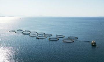 «Σελόντα - Νηρέα»: Οχτώ επενδυτές πέρασαν στην επόμενη φάση