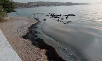 Ποιες παραλίες παραδίδονται καθαρές μετά τη ρύπανση στον Σαρωνικό