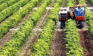 Σήμερα από τον ΕΛΓΑ αποζημιώσεις 13,3 εκατ. ευρώ σε 54.688 αγρότες