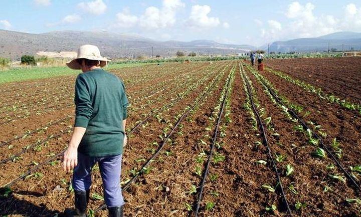 Ποια είναι η κατάσταση στον αγροτικό συνεταιρισμό σήμερα