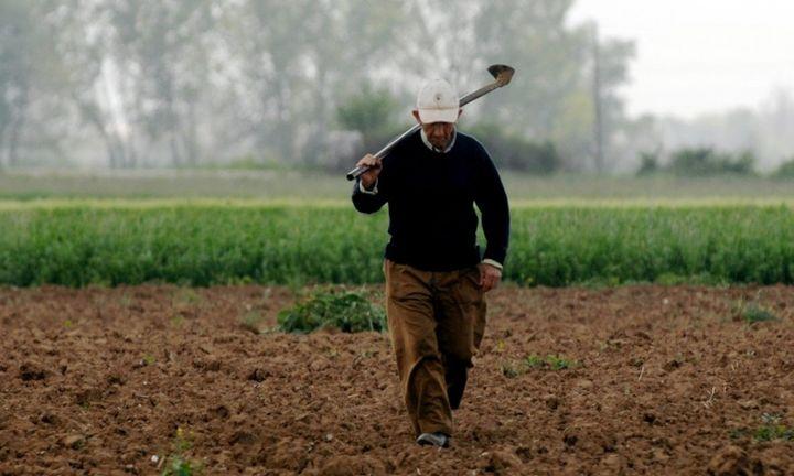Μέσα στον Δεκέμβριο οι πληρωμές στους αγρότες