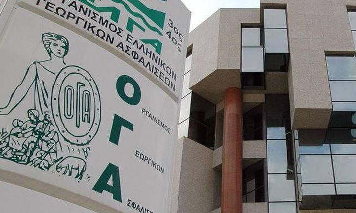ΟΓΑ: Καλεί τους ανασφάλιστους πάνω από τα 67 για αίτηση μερίσματος
