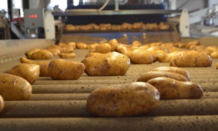 Τελείωσε ο «πόλεμος» της πατάτας