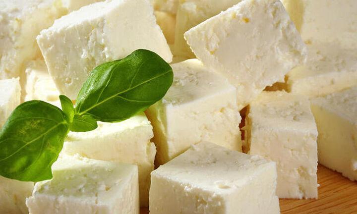 Enterprise Greece: 500 επιχειρηματικές συναντήσεις για τα ελληνικά γαλακτοκομικά προϊόντα