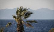 Έκτακτα μέτρα από το δήμο Αθηναίων λόγω κινδύνου πυρκαγιών και ατυχημάτων